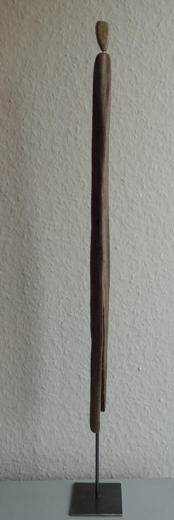 DSCN9374a
